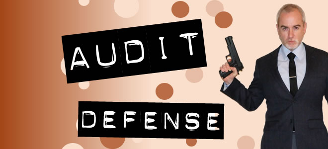 Audit Defense Services & Standard User Advocacy