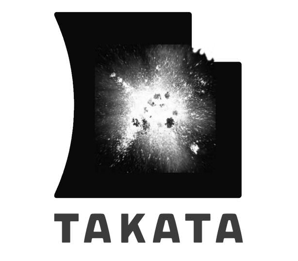 Takata Airbag Debacle Raises Questions About TS 16949 Certification