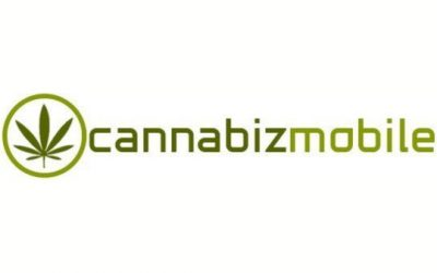 Certificate Mill Issued Cannabis Testing Certification to Internet Media Company That Doesn't Test Cannabis