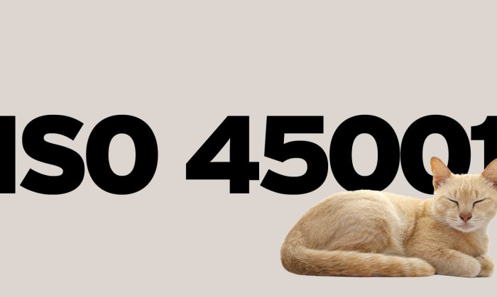 """ISO 45001:2018 — """"Helping Management and Workers Sleep Well at Night!"""""""