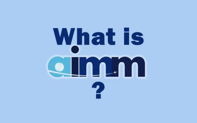 What is the Aerospace Improvement Maturity Model (AIMM)?